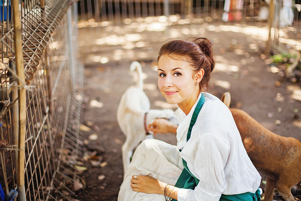 Ausbildung Tierpfleger Gehalt