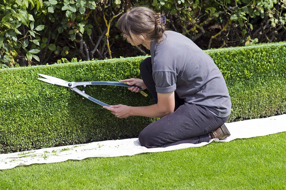 Gärtner Gehalt